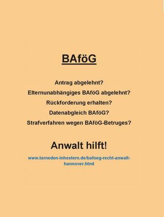bafoeg-ratgeber
